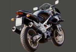 Tłumik końcowy 2szt carbon Suzuki TL 1000 R 98-00