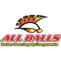 Łożyska koła tylnego zestaw z uszczelkami All Balls 25-1433